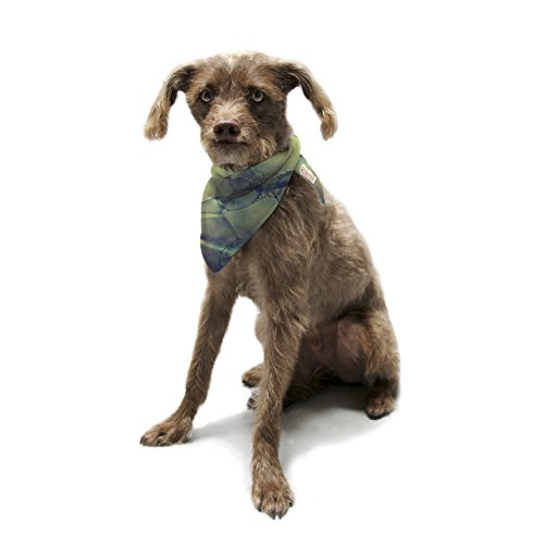 kess-inhouse-ingrid-beddoes-bubblicious-green-blue-pet-bandana-and-scarf-28-by-20-by-20-inch