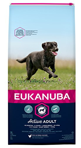fettarmes hundefutter Eukanuba Adult Hundefutter für große Rassen mit neuer und verbesserter Rezeptur – Trockenfutter für Hunde im Alter von 18 Monaten - 6 Jahren in der Geschmacksrichtung Huhn – 1 x 15kg Beutel