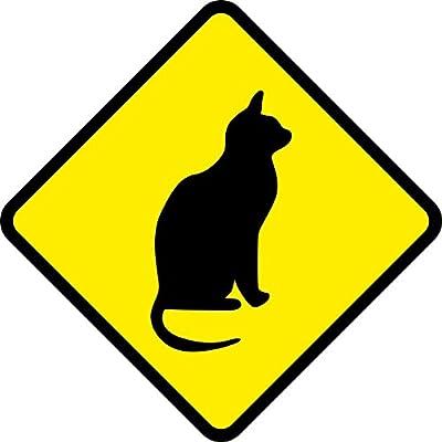 Aufkleber oder Schild Katze Cat 12 x 12 cm oder 25 x 25 cm als Schild wetterfest