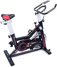 EVOLAND Bicicleta estática para interiores, Bicicleta estática magnética, Pantalla LCD, Bicicleta giratoria co