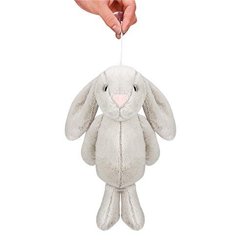 TianranRT Groß Ohr Kaninchen Plüsch Gefüllt Plüsch Tier Puppe Schöne Plüsch Niedlich Groß Ohr Hase Sammlung Ostern Geschenk (Grau) (Große Gefüllte Hase)