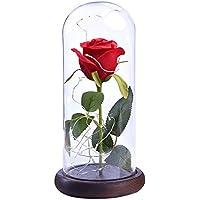 Etopfashion Beauty and The Beast Red Rose Scenery Cubierta de Cristal Artificial Led en una cúpula de Cristal con una Base de Madera para Regalos de San Valentín Aniversario Decoración del hogar