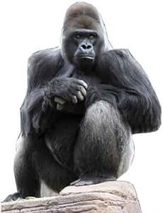 Carton Gorilla Hauteur: env. 126cm Support Standup Figurine Cinéma Support en carton Figurine Cardboard vie découpée Life Size Standup