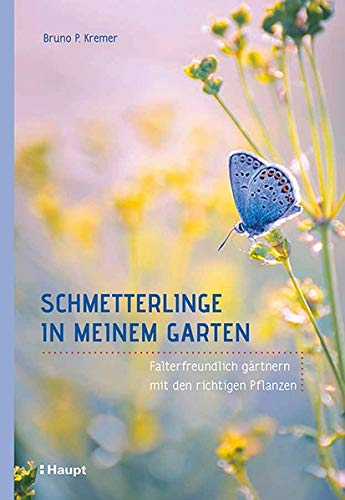 Schmetterlinge in meinem Garten: Falterfreundlich gärtnern mit den richtigen Pflanzen