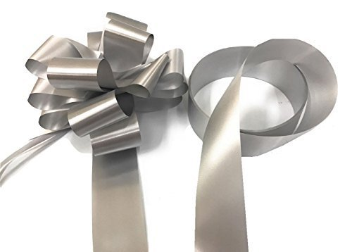 Silver match al mejor precio de amazon en savemoney inerra wedding car decoration kit large 7 bow 14 loop ready made junglespirit Images