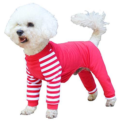 LXLLXL Haustier Hund Kleidung Sommerkleid Dünne Teddy Welpen Sommer Bomi Kleiner Hund Als Bär Kostüm