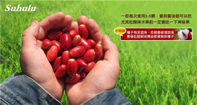 Chine bon marché 5 Pcs Miracle Fruit Graines Cashew Arbre Anacardium Tropical New Pot Occidentale Plantation Gardens Livraison gratuite 11