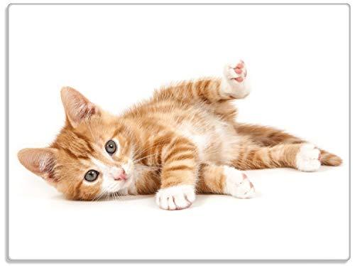 Wallario Stilvolle Glasunterlage/Schneidebrett aus Glas, Süße Katze mit großen Augen - rot weiß getigert, Größe 30 x 40 cm, Kratzfest, aus Sicherheitsglas