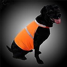 SW-Ning - Chaleco de seguridad para perro, ligero, reflectante y fluorescente de alta visibilidad, para perro, 2 tamaños