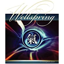 The Wellspring: An Inquiry into the Nature of Chi (English Edition)