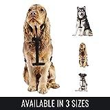 BELISY Hundegeschirr reflektierend aus Nylon - Schwarz - M (Hals 22-35cm / Brust 55-80cm)