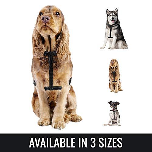 BELISY Hundegeschirr reflektierend aus Nylon - Schwarz - M (Hals 22-35cm / Brust 55-80cm) (Sicherheit Riemen Für Schränke)