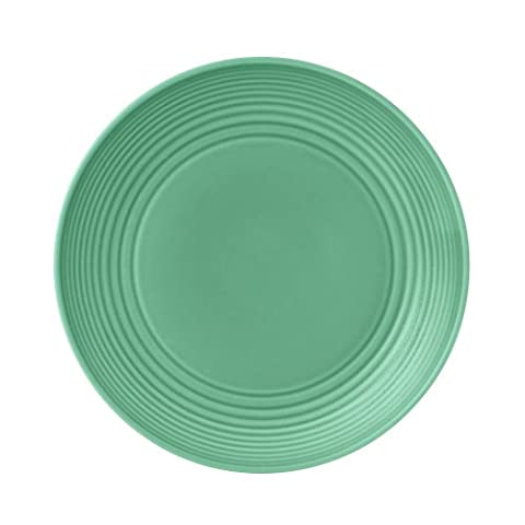 22cm/7in Plate