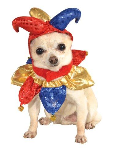 Rubies Costume Halloween Classics Collection Pet Kostüm, mittlere bis große, Jester Hat und Kragen (Welpen-halloween-kostüme)