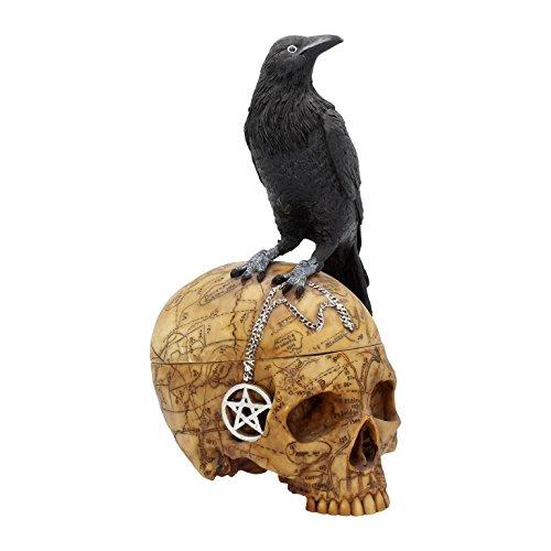 el Box Schatulle Salem Gothic Halloween Figur Dekoration NN89 (Halloween-raben Und Krähen)