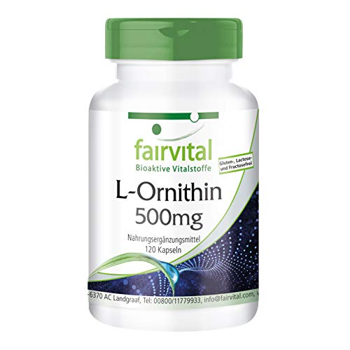 L-Ornitina 500mg - VEGANO - dosis elevada - Aminoácido - 120 cápsulas - ¡Calidad Alemana garantizada!