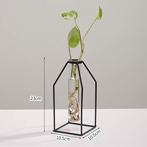 SMAQZ Wasserkulturvasendekoration - Getrocknete Blumen des Wohnzimmers, Blumengesteckausgangsdekorationen, Quadratische Große Wasserkulturflasche -