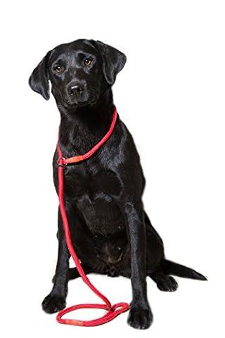 Dog & Field - Laisse Gundog - Super Douce - 8mm - Tressée en nylon avec des fixations en caoutchouc