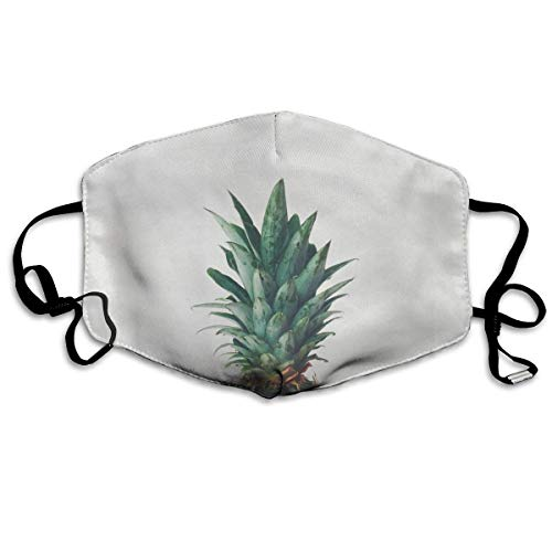 Daawqee Masques, Pineapple Top Anti Dust Face Mouth Cover Mask Respirator Cotton Protective Breath Healthy Safety Warm Windproof Mask