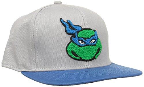 Turtles Snap Back Cap - Faces, Grau/Blau