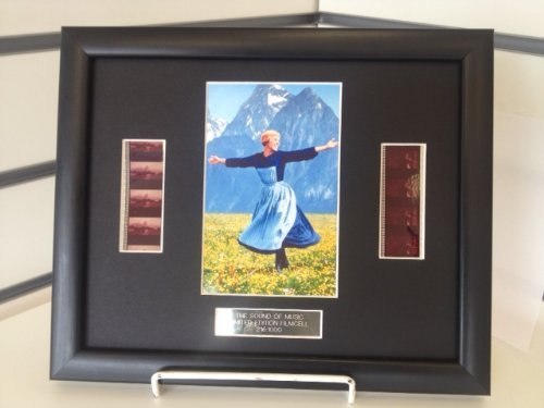 Julie Andrews THE SOUND OF MUSIC Limited Edition Framed Film Cell by DGM