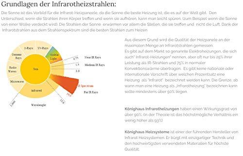 Könighaus 600W/800W/1000Watt Infrarot Bildheizung Ölgemälde Infrarotheizung mit Bild 3*