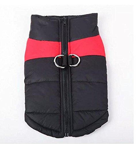LVRXJP Hund Mäntel Weste Hundekleidung warm halten Massiv Rot Grün Blau Rosa, XL