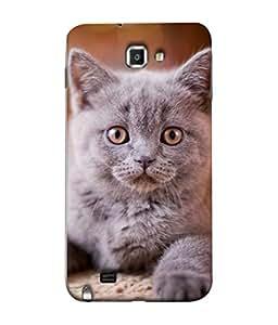 PrintVisa Designer Back Case Cover for Samsung Galaxy Note N7000 :: Samsung Galaxy Note I9220 :: Samsung Galaxy Note 1 :: Samsung Galaxy Note Gt-N7000 (Portrait Tricolor Outdoor Summer Sitting Animal Beautiful Kitten)