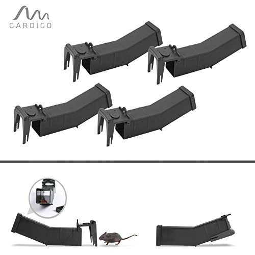 Preisvergleich Produktbild Gardigo Maus-Wipp-Falle 4er Set Lebendmausefalle Wippfunktion, Mausefalle, Lebendfalle, Mäusefalle
