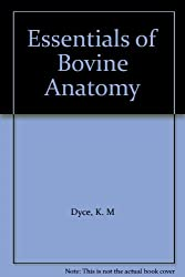Essentials of bovine anatomy,
