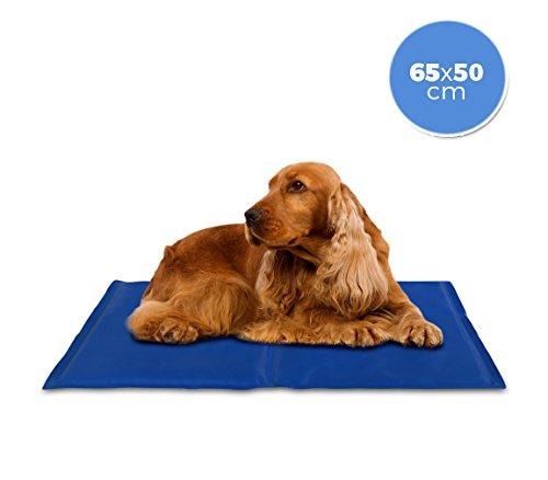MEDIA WAVE store  37101 Tapis rafraîchissant 65x50 cm pour chien taille moyenne avec un gel actif