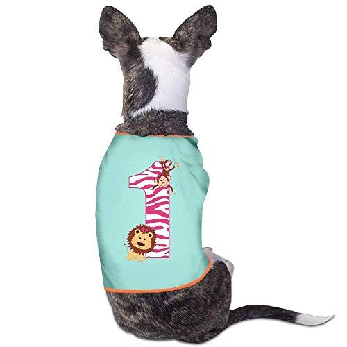 GSEGSEG It's My 1st Birthday Little Monkey Lovely Hund Katze Hemd Kostüm Haustier Hund Kleidung Polyester T-Shirt Welpen Kostüm Welpen Hund Kleidung Kleidung Kleidung