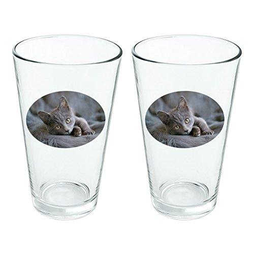 Gris Domestic Shorthair fourrure de chat fantaisie 453,6 gram Pinte à boire en verre trempé Lot de 2