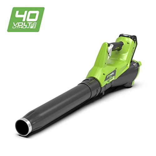 Greenworks Tools 372400807 Soplador Inalámbrico, 40 V, Verde