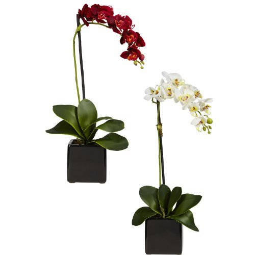 Nearly Natural 4757-S2 Phaleanopsis Orchid with Black Vase Decorative Silk Arrangement, Red and White, Set of 2 by Nearly Natural (Orchid Set Black)