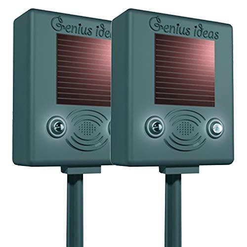 ONVAYA Solar Vogelschreck mit Ultraschall und Blitzlicht   2 Stück   Tierschreck   Vogelvertreiber   Tiervertreiber