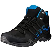 adidas Terrex Swift R2 Mid Gtx, Men