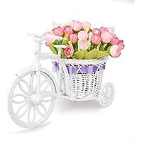 Takefuns Garden - Soporte para plantas, diseño de bicicleta decorativa (ideal para decoración de