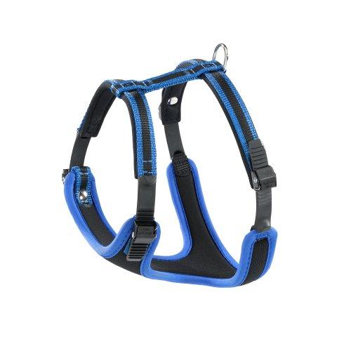 hundeinfo24.de Ferplast 75463939 Geschirr mit Polsterung ERGOCOMFORT S, für Hunde, Halsumfang: 32-42 cm cm, Brustumfang: 46-56 cm, blau
