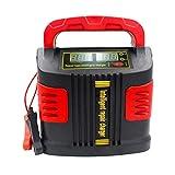 Tree-on-Life Portable Intelligent Chargeur Auto Chargeur De Voiture 350W 14A Auto Réglage LCD Chargeur De Batterie Voiture Saut Starter Booster