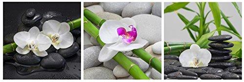 levandeo Glasbild 3er Set je 30 x 30 cm Wandbild Glas Orchideen Bambus Steine Deko