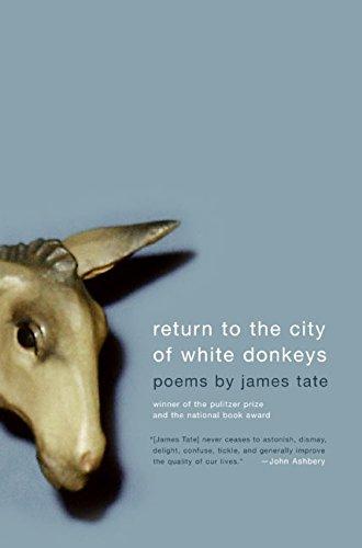 return-to-the-city-of-white-donkeys-poems