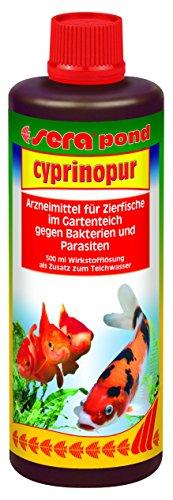 Sera 07460 Pond cyprinopur 500 ml - Arzneimittel für Zierfische mit Breitbandwirkung gegen häufige Erkrankungen im Teich