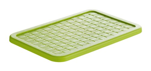 Rotho 1115405519 Deckel zu Aufbewahrungskiste Dekobox Country A5, Maß 28.4 x 19 x 1.3 cm (LxBxH), in Rattan-Optik aus Kunststoff (PP), grün (Rattan Aufbewahrungsboxen)