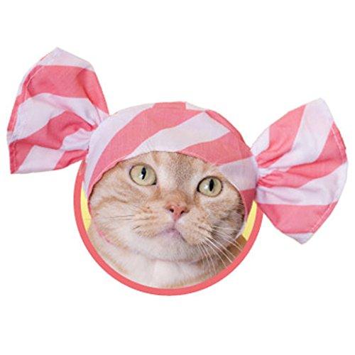 Neko Candy-Chan, Candy Hat für Katzen, Free Size, Mehrfarbig ()