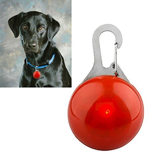 DIGIFLEX LED-Blinklicht für Hundehalsband für Haustier Hund Katze Halsband rot - 4