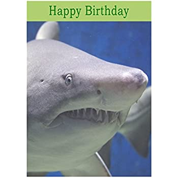 Huge shark personalised birthday card amazon office products shark birthday card bookmarktalkfo Gallery