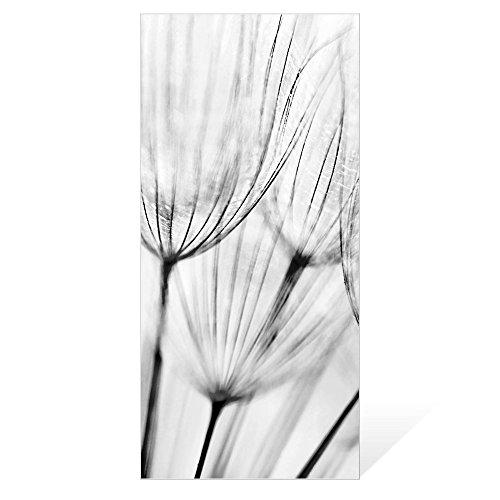 banjado - Scheibe zum Wechseln 26x56cm für Ikea Gyllen Leuchte Wandlampe Pusteblumen SW, Motivscheibe Wechselscheibe