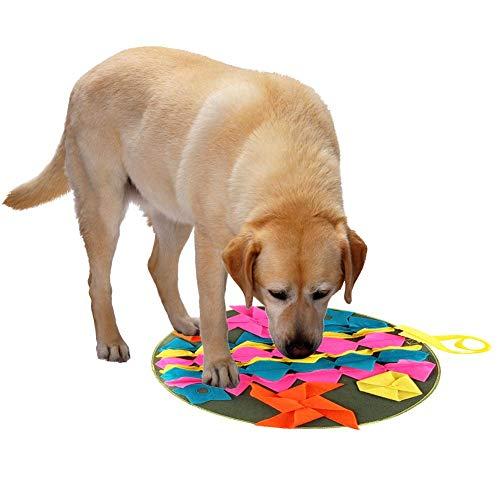 Biback Hunde-Nase Fütterungsmatte Trainingsmatte für die Arbeit und für Das Training von natürlichen Gerüchen geeignet, verhindert Schäden an Möbeln