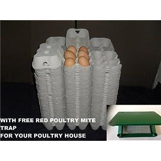 100 x 1/2 DOZEN NEW GREY EGG BOXES FOR CHICKEN DUCK HEN EGGS